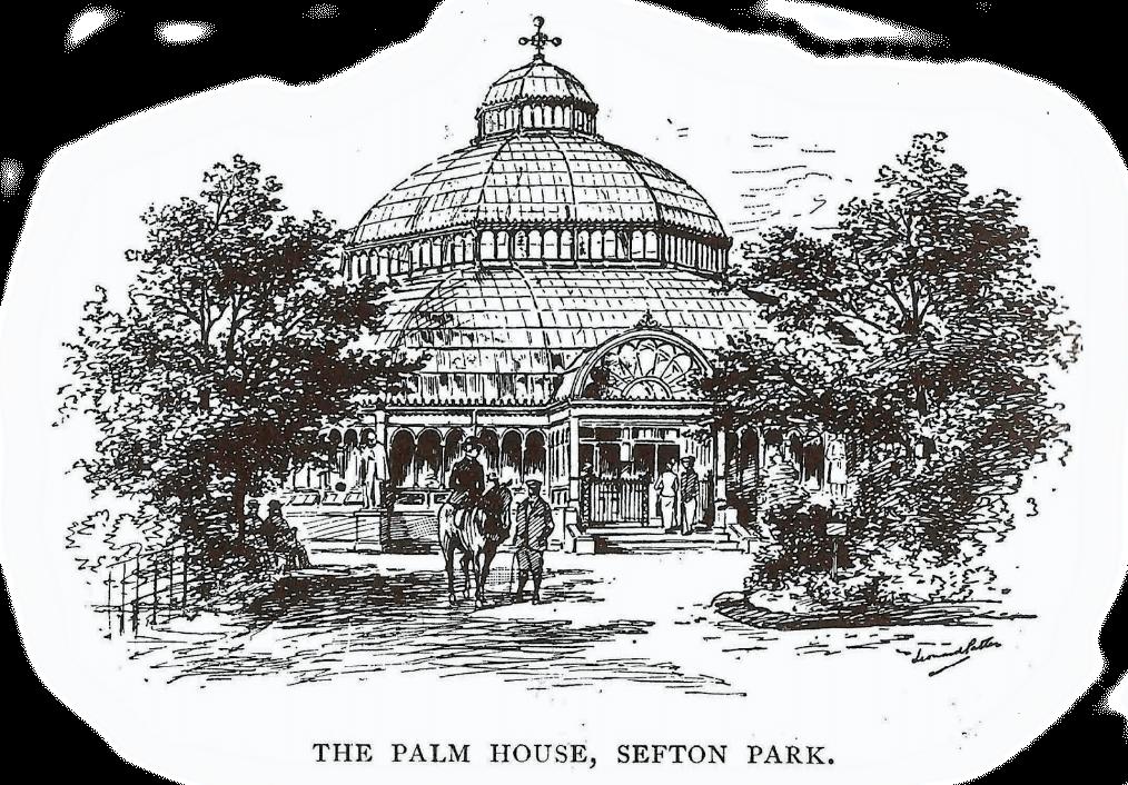 history-1896-palmhouse